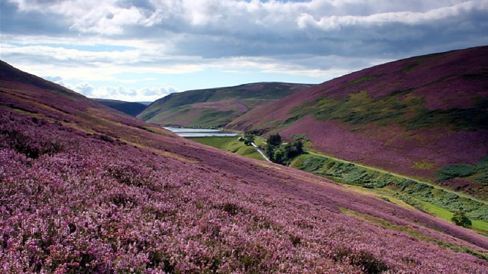 Share our love of the Pentland Hills